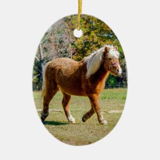 Ornement Ovale En Céramique Joli poney de Shetland