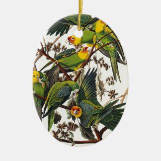 Ornement Ovale En Céramique Perroquet de la Caroline - John James Audubon