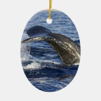 Ornement Ovale En Céramique Queue de baleine