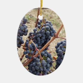Ornement Ovale En Céramique Raisins rouges sur la vigne. La Toscane, Italie