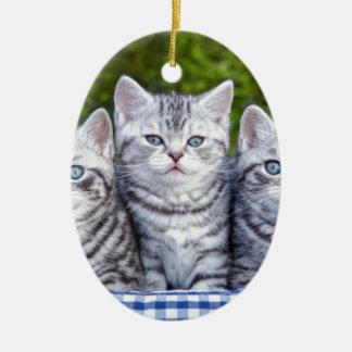 Ornement Ovale En Céramique Trois jeunes chats tigrés argentés dans le panier