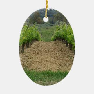 Ornement Ovale En Céramique Vignoble au printemps. La Toscane, Italie