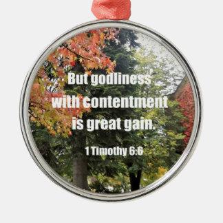 Ornement Rond Argenté 1 6:6 mais piété de Timothy avec la satisfaction