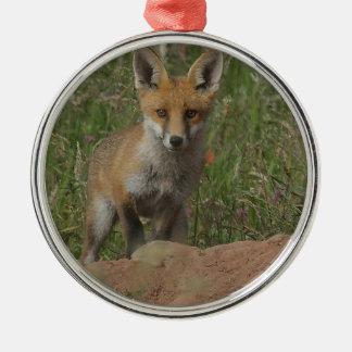 Ornement Rond Argenté Fox rouge