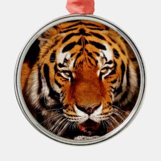 Ornement Rond Argenté Haut étroit de tigre