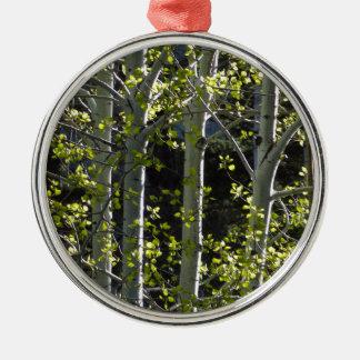 Ornement Rond Argenté Jeunes arbres d'Aspen