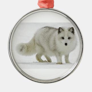 Ornement Rond Argenté Le Fox arctique blanc se mélange dans la neige