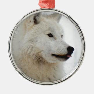 Ornement Rond Argenté Loup arctique collant sa langue