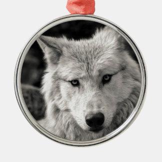 Ornement Rond Argenté Loup noir et blanc