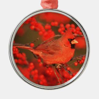 Ornement Rond Argenté Mâle cardinal du nord rouge, IL