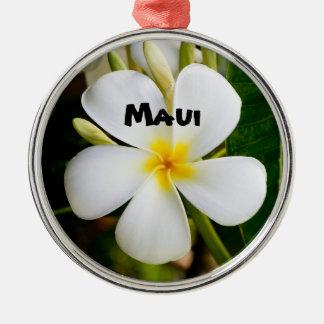 Ornement Rond Argenté Maui spectaculaire