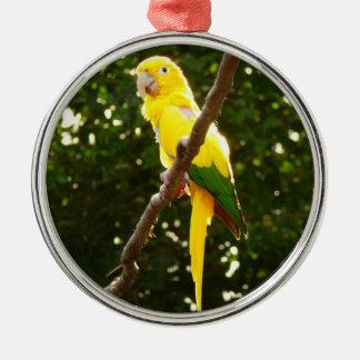 Ornement Rond Argenté Perroquet jaune