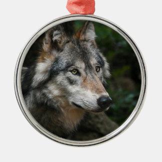 Ornement Rond Argenté Portrait de loup