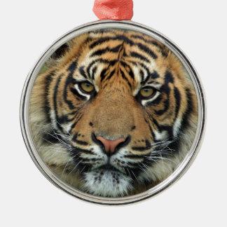 Ornement Rond Argenté Tigre adulte