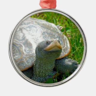 Ornement Rond Argenté tortue