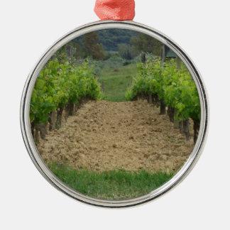 Ornement Rond Argenté Vignoble au printemps. La Toscane, Italie