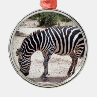 Ornement Rond Argenté Zèbre africain au zoo