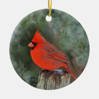 Ornement rond cardinal rouge