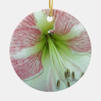 Ornement Rond En Céramique 104a l'amaryllis Apple fleurissent 2 ouverts