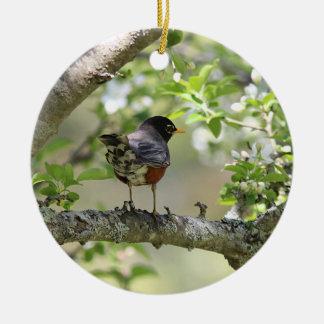 Ornement Rond En Céramique Américain Robin et fleurs de ressort