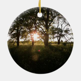 Ornement Rond En Céramique Arbres de silhouette avec des arbres de lumière du