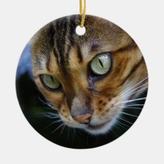 Ornement Rond En Céramique Beau chat du Bengale