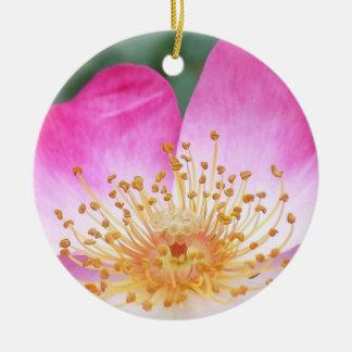 Ornement Rond En Céramique Belle fleur rose de fleur