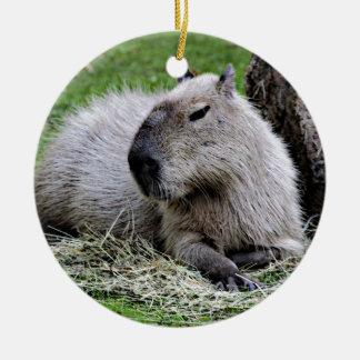 Ornement Rond En Céramique capybara,