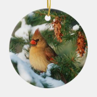 Ornement Rond En Céramique Cardinal du nord dans l'arbre, l'Illinois