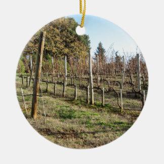 Ornement Rond En Céramique Champ nu de vignoble en hiver. La Toscane, Italie