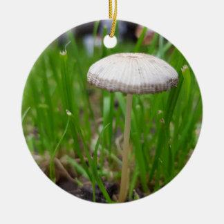 Ornement Rond En Céramique champignon de bébé