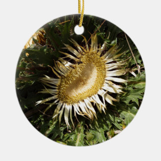 Ornement Rond En Céramique Chardon Carline (acanthifolia de Carlina)