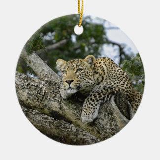 Ornement Rond En Céramique Chat sauvage animal de safari de l'Afrique d'arbre