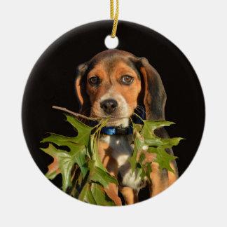 Ornement Rond En Céramique Chiot espiègle de beagle avec le feuille