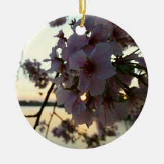 Ornement Rond En Céramique Coucher du soleil de fleurs de cerisier dans le