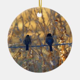 Ornement Rond En Céramique Couples romantiques d'oiseau de moineau sur un