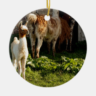 Ornement Rond En Céramique Famille de lama de bébé