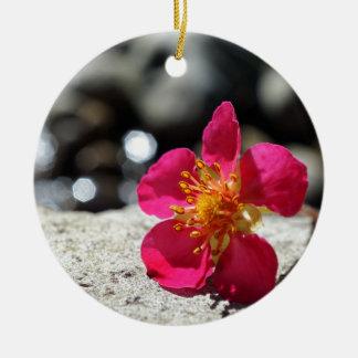 Ornement Rond En Céramique Fleur rose de mystère