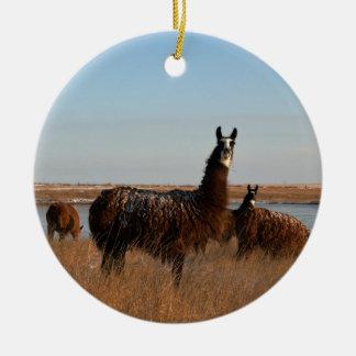 Ornement Rond En Céramique Gardien de lama