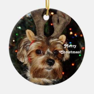 Ornement Rond En Céramique Klaxons Yorkshire Terrier, Joyeux Noël de renne !