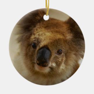 Ornement Rond En Céramique Koala