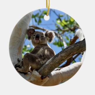 ORNEMENT ROND EN CÉRAMIQUE KOALA DANS L'ARBRE QUEENSLAND AUSTRALIE