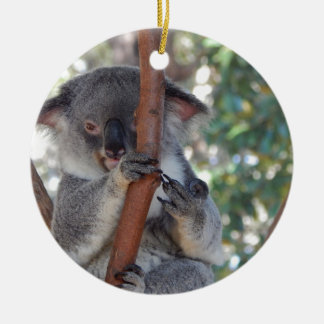 Ornement Rond En Céramique Koala.JPG
