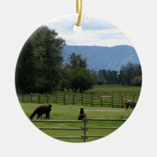 Ornement Rond En Céramique Lamas pâturés dans une vallée de montagne