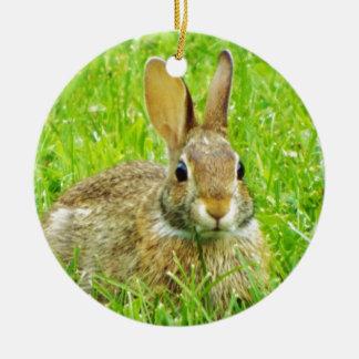 Ornement Rond En Céramique lapin