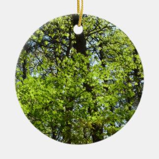 Ornement Rond En Céramique L'érable de ressort laisse la nature verte