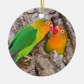 Ornement Rond En Céramique Les perruches de Fischer embrassant, Afrique