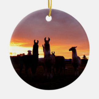 Ornement Rond En Céramique Lever de soleil de lama
