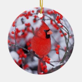 Ornement Rond En Céramique Mâle cardinal du nord, hiver, IL