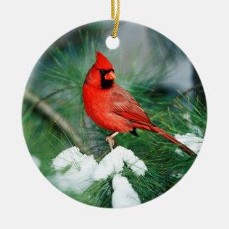 Ornement Rond En Céramique Mâle cardinal du nord sur l'arbre, IL